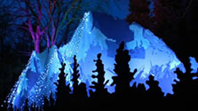 CityStream: Zoo Lights