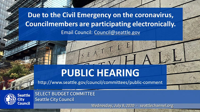 Select Budget Committee Public Hearing 7/8/20