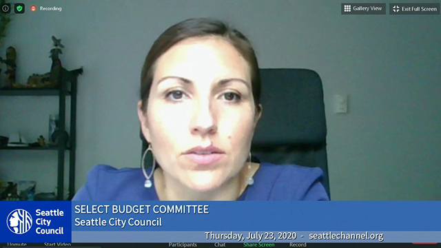 Select Budget Committee 7/23/20