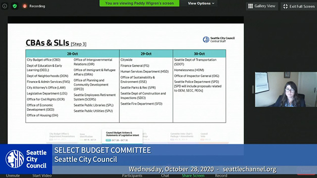 Select Budget Committee Session I 10/28/20