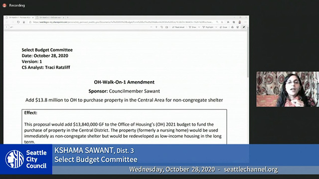 Select Budget Committee Session II 10/28/20