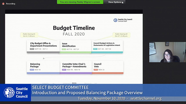 Select Budget Committee Session I 11/10/20