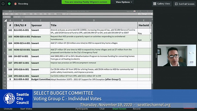 Select Budget Committee 11/19/20
