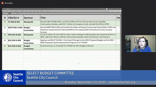 Select Budget Committee 11/23/20